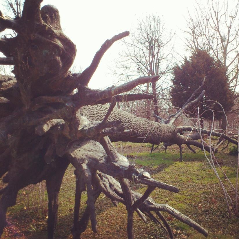 L'arbre des voyelles, de Penone