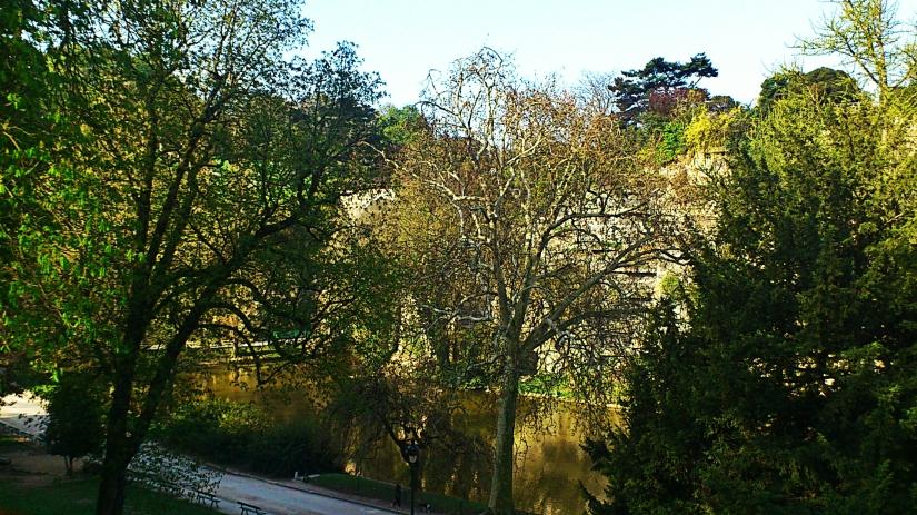 Le lac avec des gentils z'arbres devant